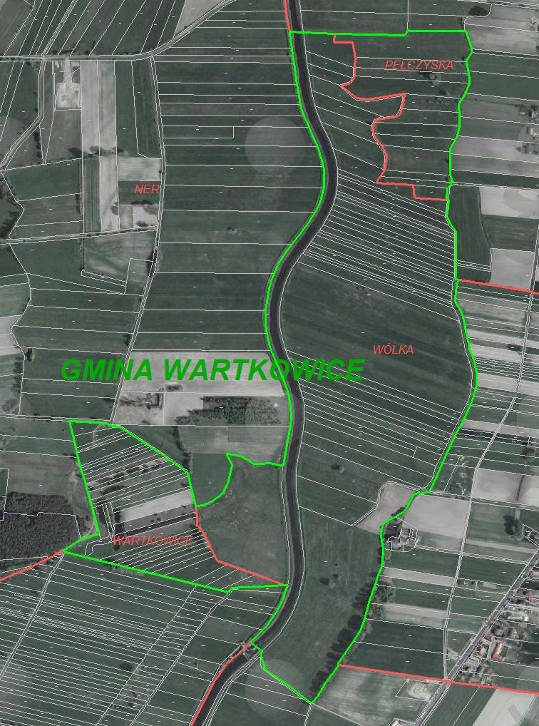Wartkowice